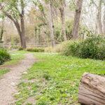 Le Parc de la Torse, le poumon vert d'Aix-en-Provence