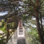 Nuit insolite : cabane perchée dans les arbres