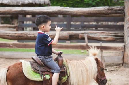 balade en poney dans une ferme en provence