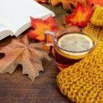 Aix: le top 20 des événements de novembre