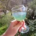 Le kombucha, la boisson fermentée aux micro-organismes vivants