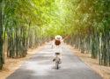 sitation byciclette