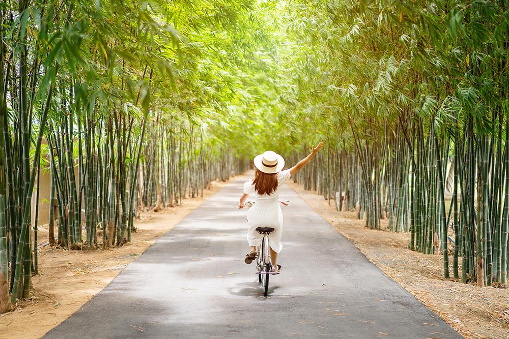 citation bicyclette